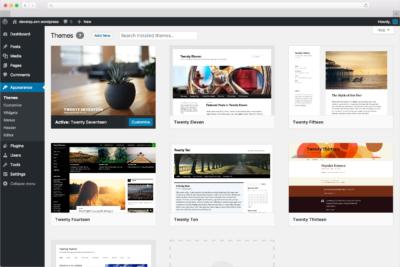 Conceptos básicos para dominar Wordpress