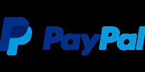 Paypal medios de pago en un ecommerce